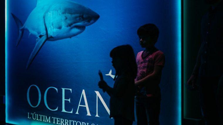 oceans-26-de-89-1024x682-760x428.jpg