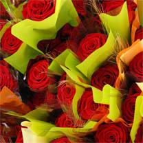 208_roses_sant_jordi